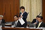 総務委員会(2017年4月25日)