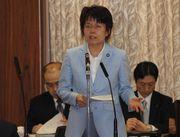 総務委員会で質疑・採決(郵政法案)