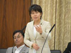 総務委員会で質疑(2017年6月1日)