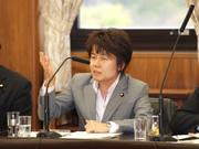 第174通常国会/国民生活・経済に関する調査会(2010年4月14日)