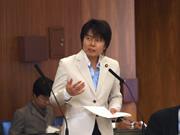 第176臨時国会/総務委員会(2010年11月11日)