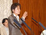 第183通常国会/総務委員会(2013年5月30日)
