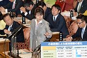 第185臨時国会/予算委員会(2013年10月23日)