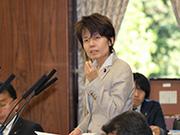 第185臨時国会/災害対策特別委員会(2013年11月13日)