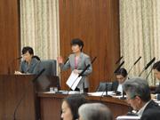 第186通常国会/総務委員会(2014年5月29日)