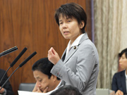 第186通常国会(閉会中審査)/災害対策特別委員会(2014年8月28日)