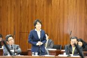 第192臨時国会/総務委員会(2016年11月17日)