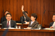 第192臨時国会/総務委員会(2016年11月24日)